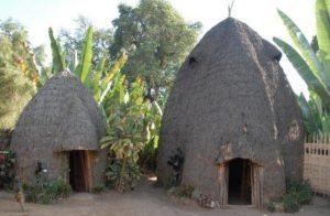 Maison de la tribu Dorze dans le village de Chencha Arba Minch, Éthiopie
