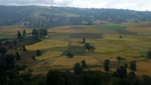 Landscape from Bale Mountains, South Ethiopia