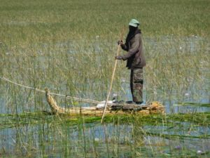 Fisherman in Rift Valley Lakes on papyrus boat, South Ethiopia